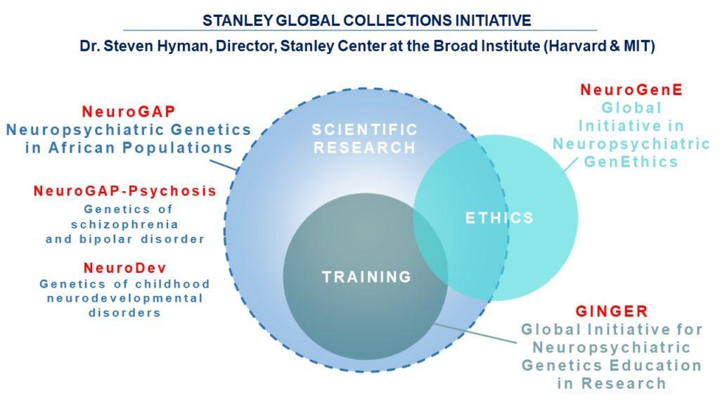 Venn diagram of scientific research, training, and ethics. Scientific research has labels of NeuroGAP, NeuroGAP-Psychosis, NeuroDev. Training has label of GINGER. Ethics has label of NeuroGenE